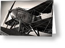 Biplane Greeting Card