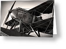 Biplane Greeting Card by Carlos Caetano