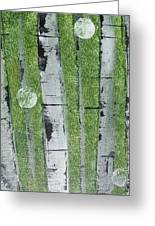Birch - Green 1 Greeting Card by Jacqueline Athmann