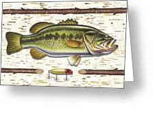 Birch Bass Greeting Card by JQ Licensing