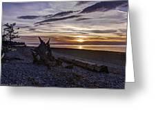 Birch Bay Evening Greeting Card