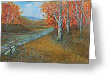 Birch Fall Greeting Card