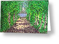 Birch Path Greeting Card