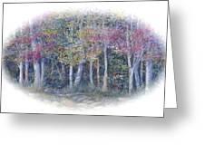 Birch Tree Gathering Greeting Card