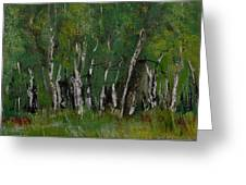 Birch Tree Panorama Greeting Card