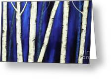 Birch Trees-3 Greeting Card