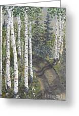 Birch Trees Along Kennys Road  2 Greeting Card