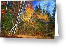 Birch Trees - Autumn Greeting Card
