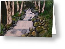 Birch Trees By The Brook Greeting Card