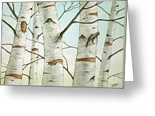 Birch Trees In Late Autumn Greeting Card