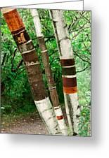 Birch Wood Layers Greeting Card