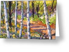 Birches 02 Greeting Card