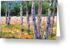 Birches 04 Greeting Card