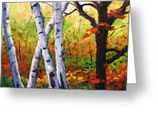Birches 05 Greeting Card