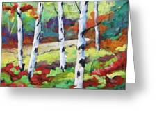 Birches 07 Greeting Card