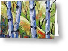 Birches 09 Greeting Card