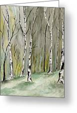 Birches Before Spring Greeting Card