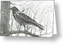 Bird, 2011 Greeting Card