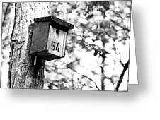 Bird 54 Where Are You Greeting Card
