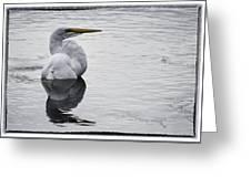 Bird Bath 4619 Greeting Card