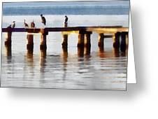 Bird Dock At Sunset Greeting Card