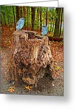 Bird Gossip Greeting Card