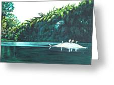 Bird Haven Greeting Card
