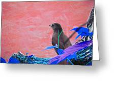 Bird In Abstract Greeting Card