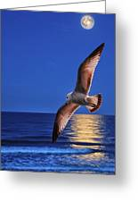 Bird In Moonlight Greeting Card