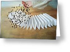 Bird Migration 2 Greeting Card