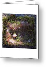 Bird Nest With Egg Greeting Card