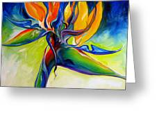 Bird Of Paradise 24 Greeting Card