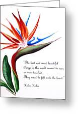 Bird Of Paradise Poem Greeting Card