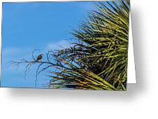 Bird On A Palm Branch Greeting Card