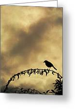 Bird On Branch Montage Greeting Card