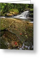 Bird Rock Falls Greeting Card