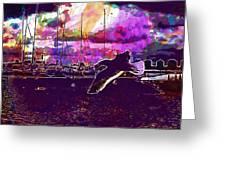 Bird Seagull Ave Beach Wings Sky  Greeting Card