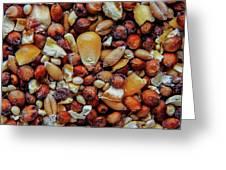 Bird Seed Greeting Card