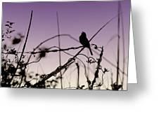 Bird Sings Greeting Card