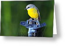 Bird Siting On A Water Sprinkler Greeting Card