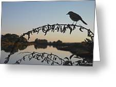 Bird Song At Last Light Greeting Card by Dave Gordon
