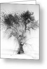 Bird Tree Land Bw Fine Art Print Greeting Card