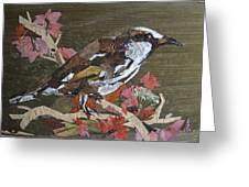 Bird White Eye Greeting Card