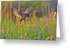 Bird With Prey Greeting Card