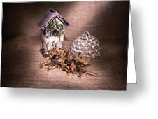 Birdhouse And Beehive 2 Greeting Card