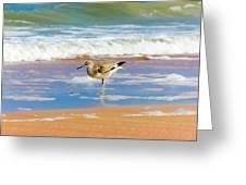 Birdling Greeting Card
