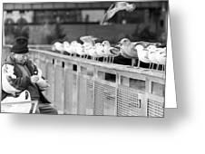 Birdman Of Lower Manhattan Greeting Card