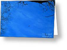 Birds Aloft In The San Bernardino Mountains Greeting Card