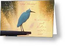 Birds And Fun At Butler Park Austin - Birds 3 Detail Macro Poster - Good Morning Greeting Card