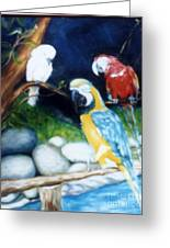 Birds At Rest Greeting Card